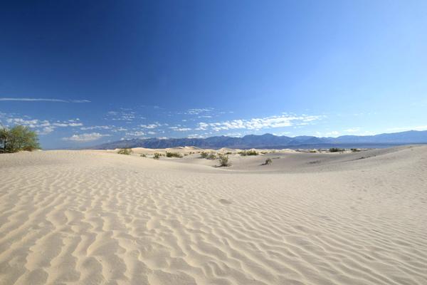 8:10~8:45 観光 メスキートフラット砂丘(Mesquite Flat Sand Dunes)