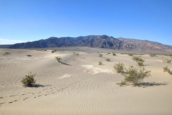 デスバレー国立公園 メスキートフラット砂丘