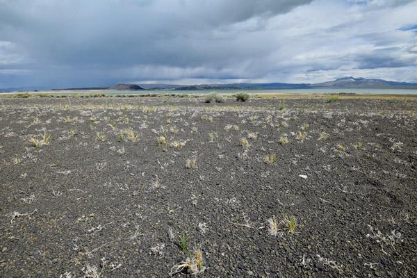 モノ湖(ブラックポイント)の歩きやすさ