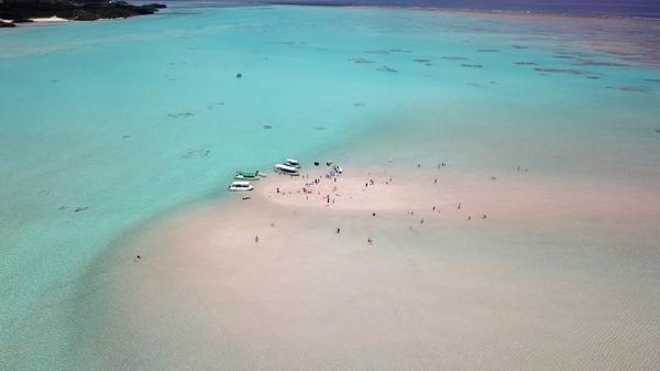百合ヶ浜の見どころ