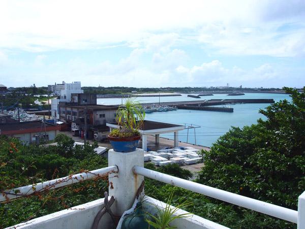 テラス席:茶花の海を一望できる
