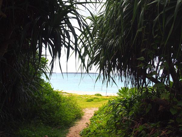 海カフェの近くにあるビーチ:ウドノスビーチ