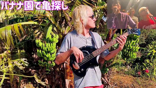 たなしん(タナブロ) in 与論島【バナナ園、ドラゴンフルーツ園で亀探し】