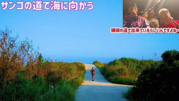 たなしん(タナブロ) in 与論島【サンゴの道で海に向かう】