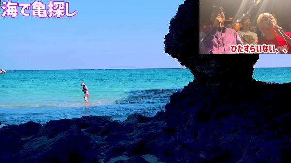 たなしん(タナブロ) in 与論島【海へ、海で亀探し】