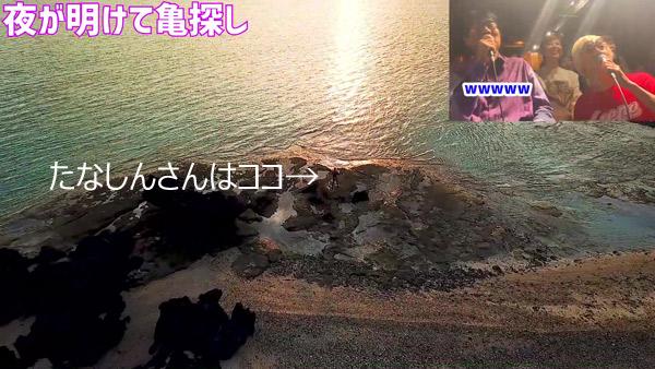 たなしん(タナブロ) in 与論島【夜が明けて亀探し】