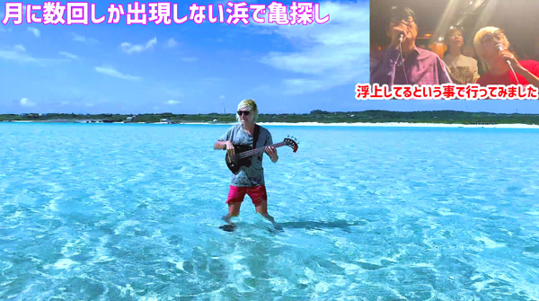 たなしん(タナブロ) in 与論島【月に数回しか出現しない美しい浜で亀探し】