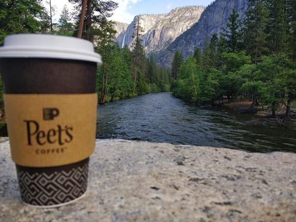 まとめ:コーヒーコーナー(ピーツコーヒー & ティー)について