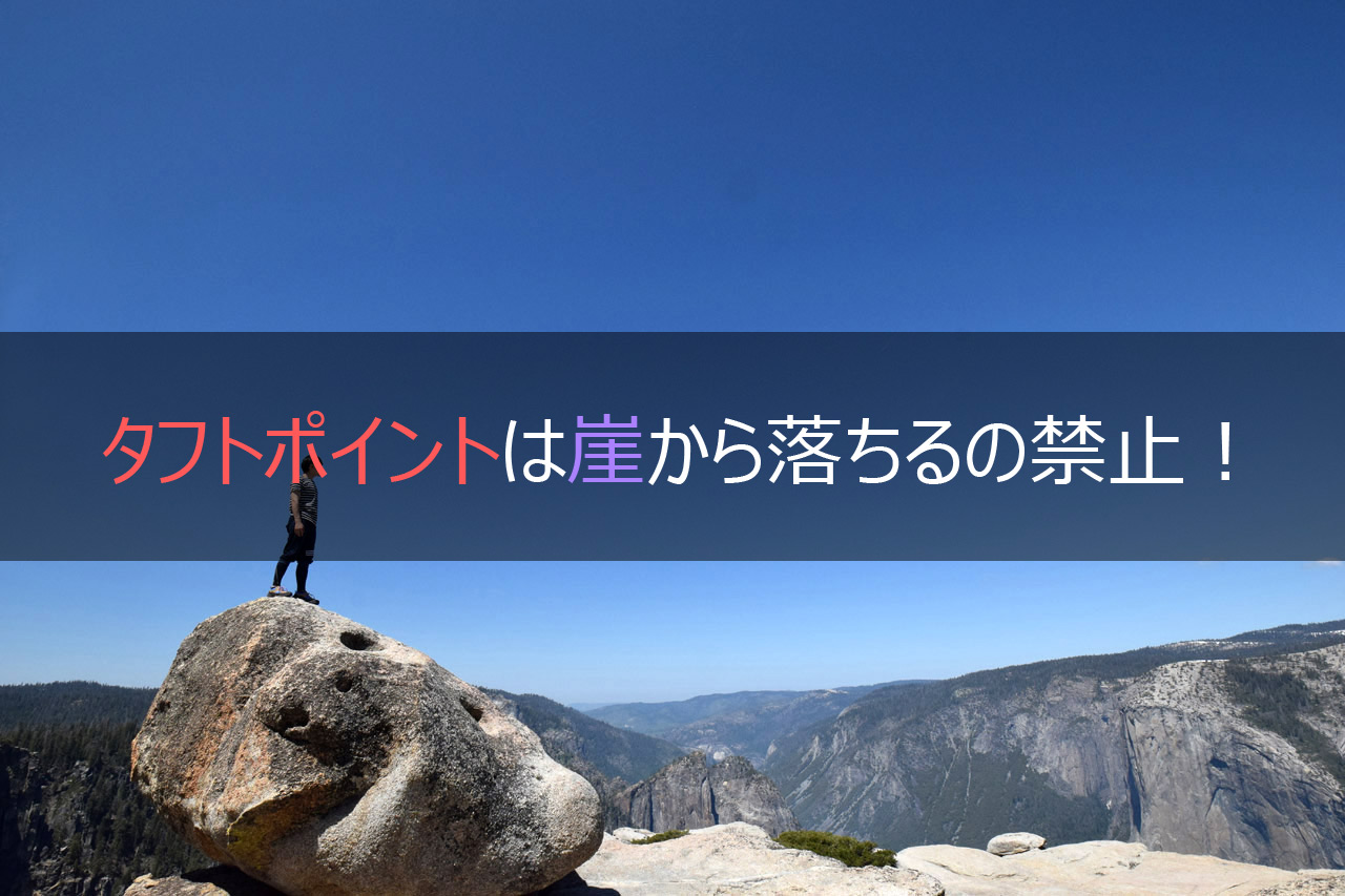 タフトポイントは崖から落ちるの禁止!