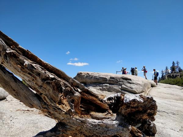ヨセミテ国立公園 タフトポイントの注意点
