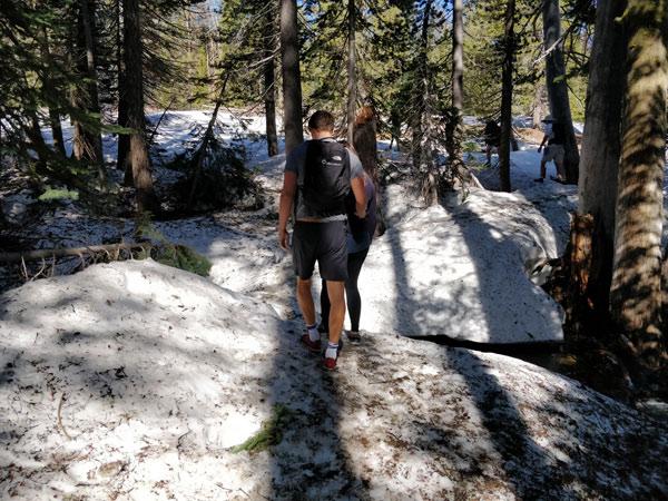 タフトポイントのハイキング 出発~森に入るまで