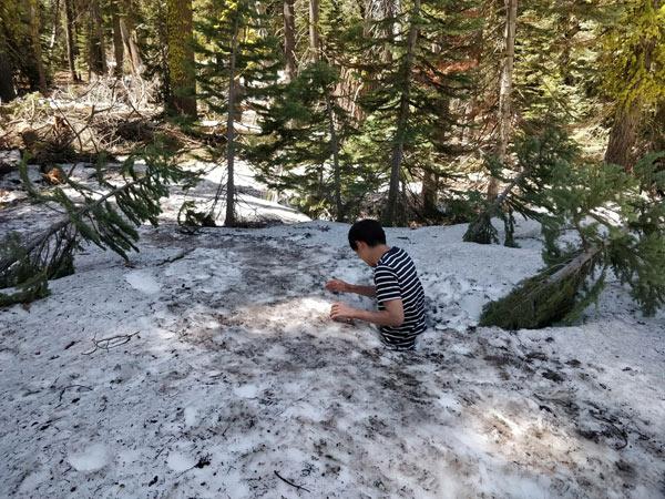 タフトポイントのハイキング 帰りのアクシデント