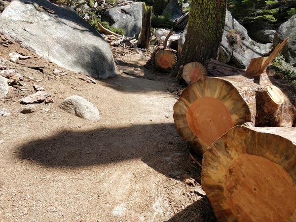 ハイキング体験記 第3部:アッパーヨセミテ滝頂上まで