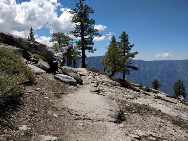 ハイキング体験記 第4部:ヨセミテポイントまで