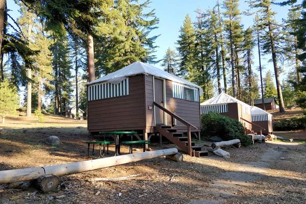 一番安いセコイア&キングスキャニオン国立公園のホテル