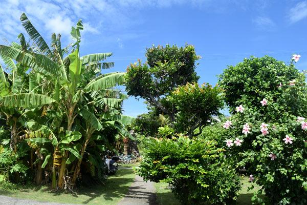 与論島 ビーチランドロッジのおすすめ3:南国気分を味わえる