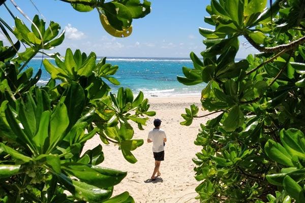 【与論島から】新型感染症に関する観光客の皆様に対するお願い