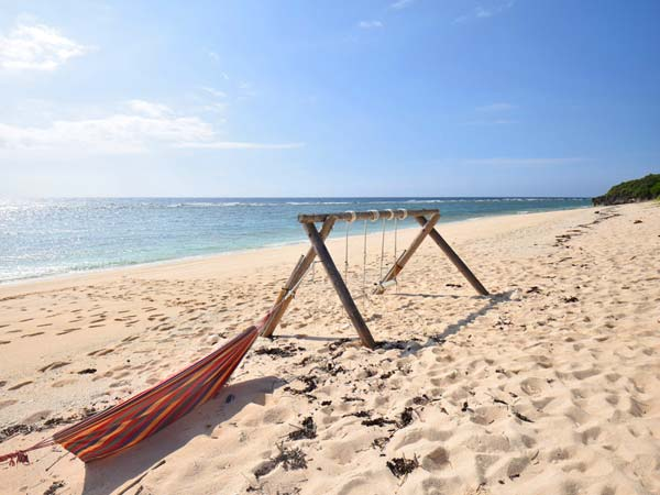 パラダイスビーチのおすすめポイント