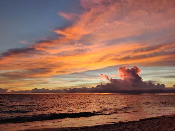 まとめ:パラダイスビーチ