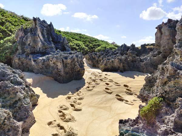 品覇海岸:左側