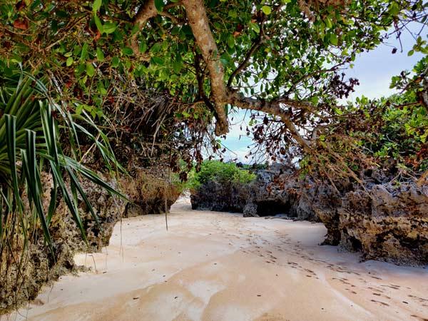 ウドノスビーチ:東南アジア感
